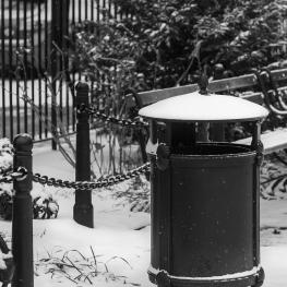 Snowy Lid at Abingdon Square 1/9/2015
