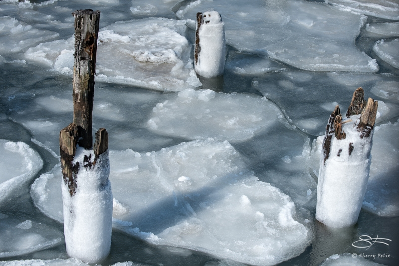 3 Pilings - One Smiling, Hudson 2/25/2015