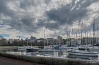 Rushcutters Bay July 24
