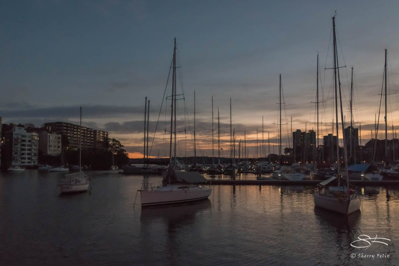Rushcutters Bay dawn July 26