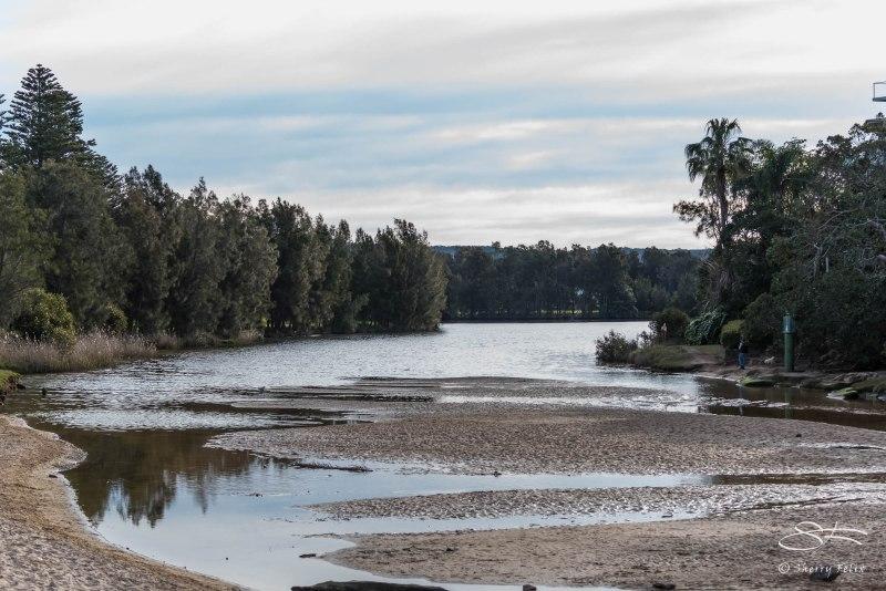 Manly Lagoon