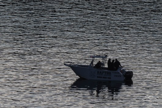 Fishing in Middle Harbor, Mosman