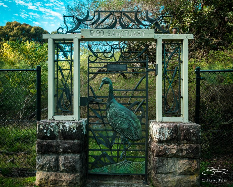 Wrought iron Gate in to Bird Sanctuary in Centennial Park, August 2, 2015