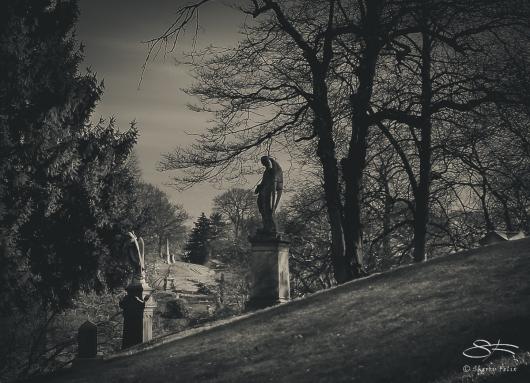 Hillside, Green-Wood Cemetery 7/29/2008