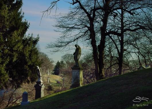Hillside, GreenWood Cemetery 7/29/2008