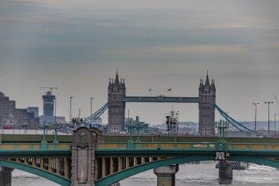 Southwark and Tower Bridge 12/19/2015