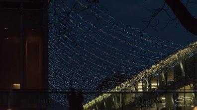 Christmas Lights, Thames 12/19/2015