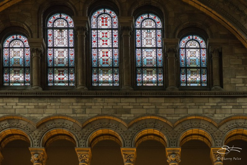 Nattural History Museum, London 12/22/2015