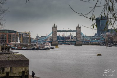 View of Tower Bridge, River Neckinger, Thames 1/1/2016