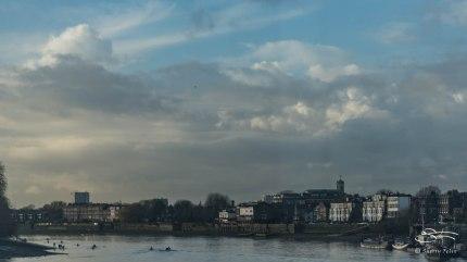 Thames 1/2/2016
