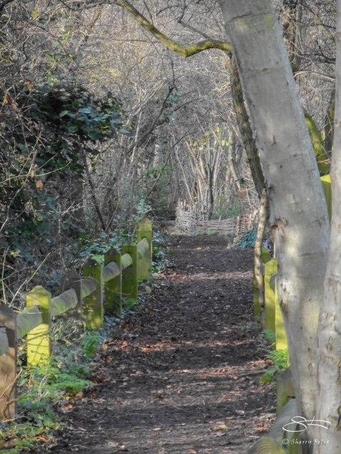 Camley Street Natural Park, London 1/5/2016