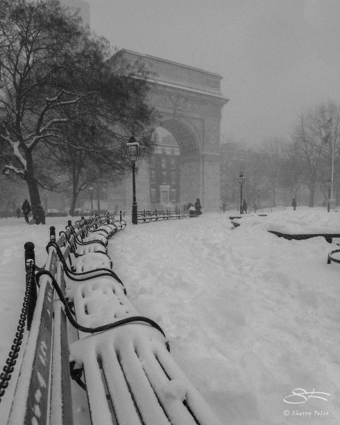 Washington Square Park, NYC 1/23/2016