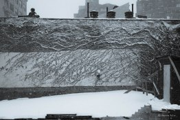 From our Window, NYC 1/23/2016