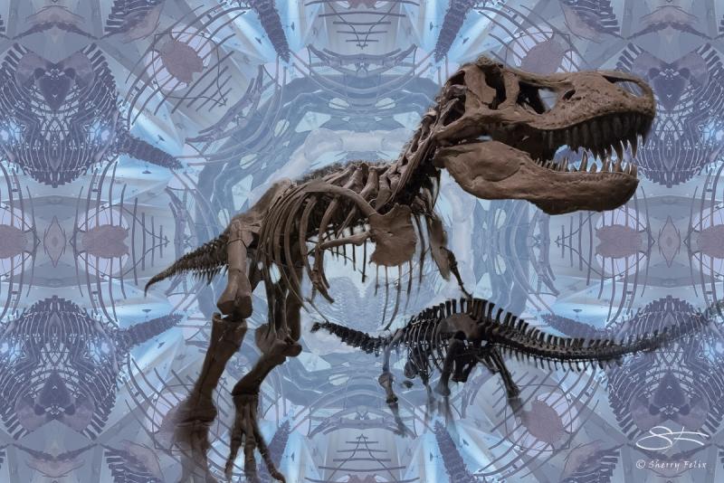 T-Rex at AMNH 3/10/2016