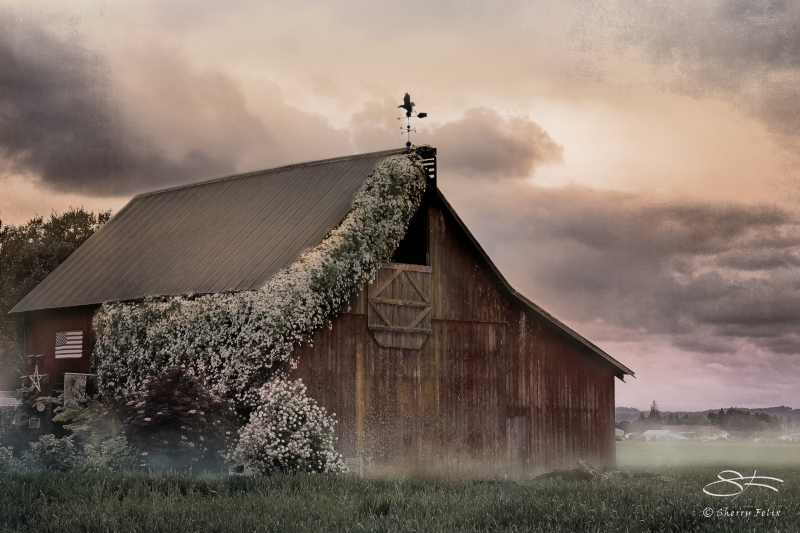 Barn edited by Sherry Felix, source Cee Neuner