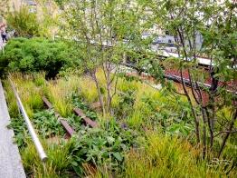 2009-09-07 High Line 04