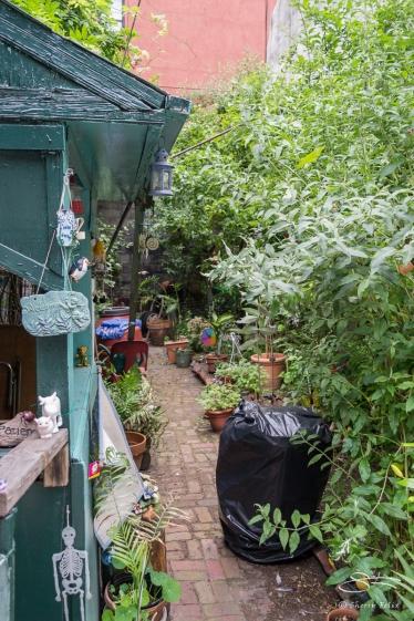 20110604 Vamos Sambrar Garden 28