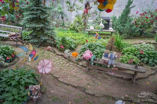 20110604 Suen Dragon Garden 18