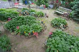 20110604 Suen Dragon Garden 19