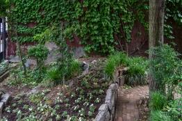 20110605 11th Street Community Garden 4