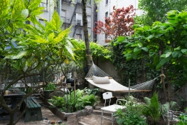 20110605 11th Street Community Garden 6