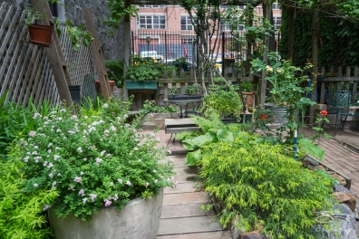 20110605 11th Street Community Garden 9