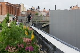 20110614 High Line 035.NEF