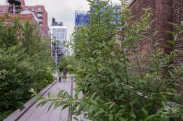 2011-06-14 High Line 81