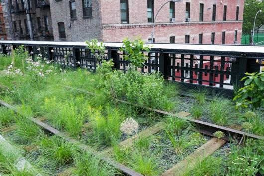 2011-06-14 High Line 100