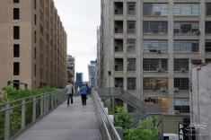 2011-06-14 High Line 103