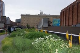 2011-06-14 High Line 106