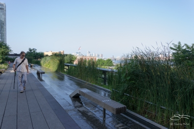 2011-07-09 High Line 31
