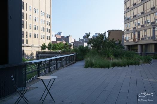 2011-07-09 High Line 34