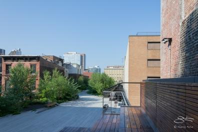 2011-07-09 High Line 42