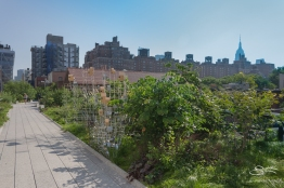 20110709 High Line 58.NEF