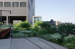2011-07-09 High Line 66