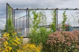 2011-08-04 High Line 12