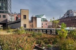 2011-11-03 High Line 23