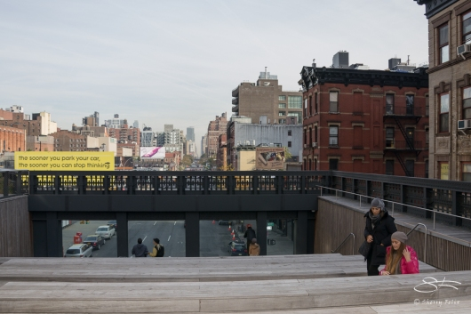 2011-11-03 High Line 32