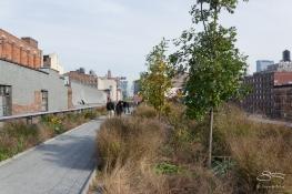 20111103 High Line 36.NEF