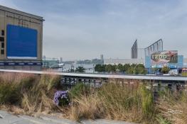 2011-11-03 High Line 37
