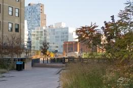 2011-11-11 High Line 19