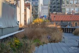 20111111 High Line 24