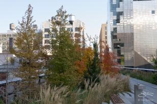2011-11-11 High Line 42