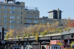 2011-11-22 High Line