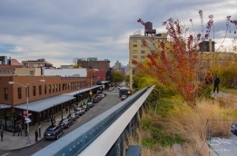 2011-11-27 High Line