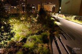 2011-11-30 High Line 12