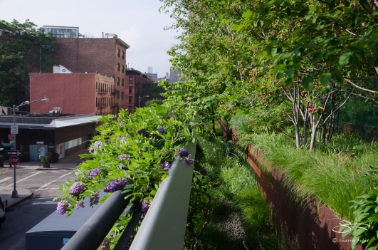 2012-05-23 High Line