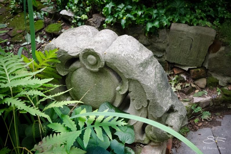20120728 Alberts Garden 18