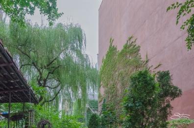 20120728 Lower East Side Ecology Center 48